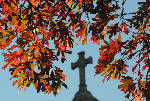 Dry weather conditions in Chattanooga area may rob leaves of their fall colors