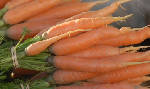 Eat Right: Fresh Carrots with Herbs