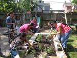 Crabtree Farms offers workshop  on community gardens