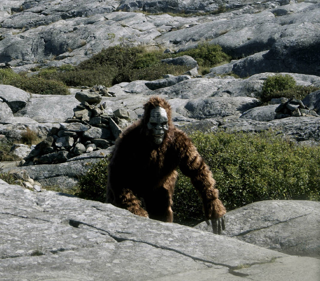 bigfoot spotted two dozen times in chattanooga area times free press