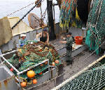 Report: Catch limits boost depleted fish stocks