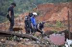 Rescuers dig in mud, rain for dead in Mexico slide