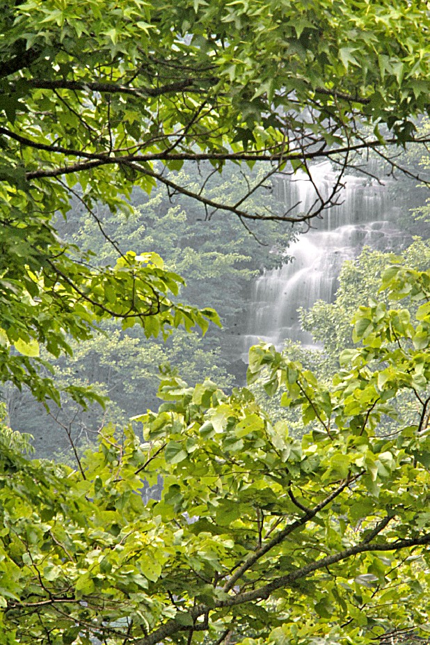 Amicalola falls can barely be seen through dense forest nestled in the North Georgia mountains just a few hours drive from Chattanooga.