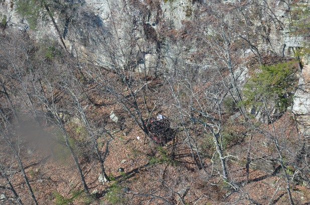 An aerial photograph, distributed by the Hamilton County Sheriff's Office, shows the crimson Jeep Rubicon belonging to Gail Palmgren. The Jeep and the human remains believed to be those of Palmgren were discovered Thursday on Signal Mountain.