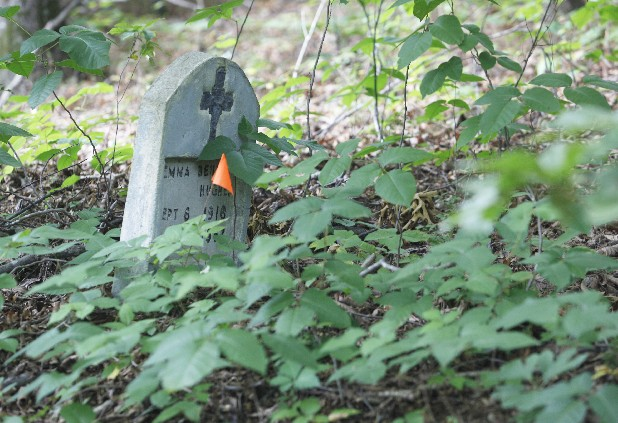 A solitary headstone sits in a small patch of poison ivy amid unmarked, sunken graves at Pleasant Garden Cemetery, a historically black cemetery near Missionary Ridge. It has been seemingly neglected for decades.