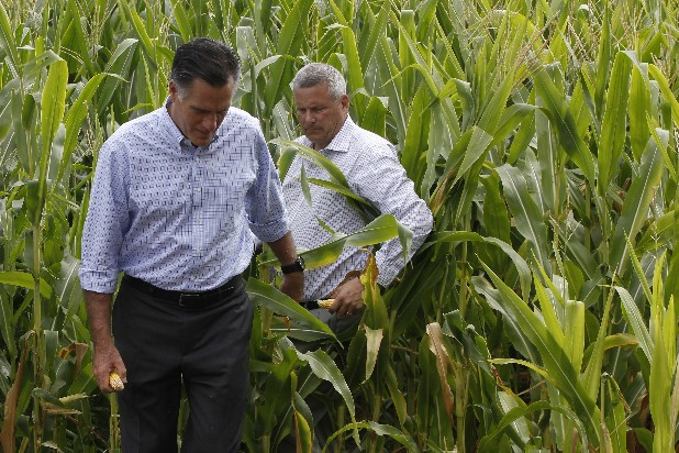 Republican presidential candidate Mitt Romney walks with Iowa Agriculture Secretary Bill Northey in a corn field in Des Moines, Iowa, Wednesday.