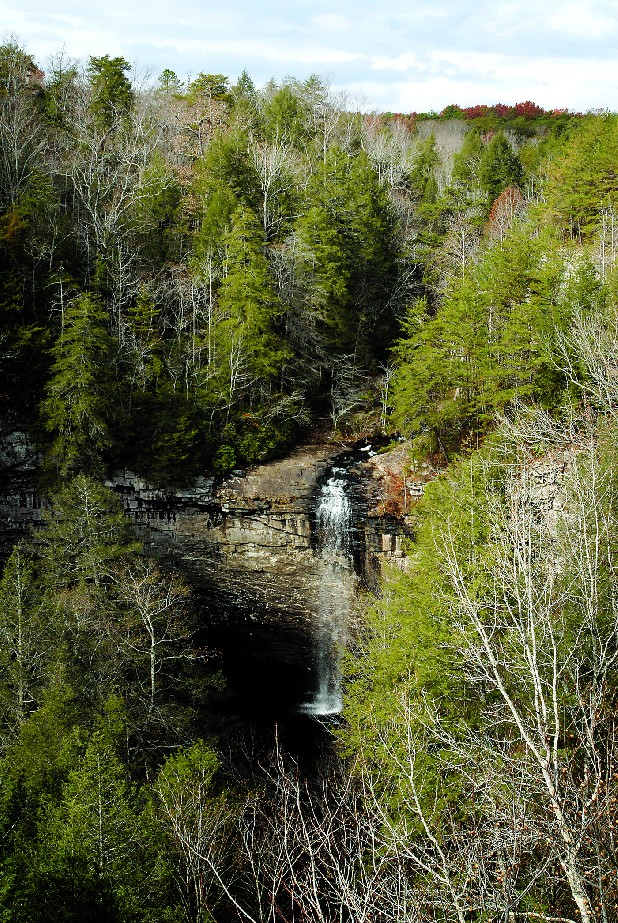 Foster Falls, one area of the multi-pronged Savage Gulf State Natural Area, is in both Grundy and Sequatchie counties.