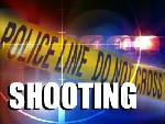 3-year-old shoots little brother in the head