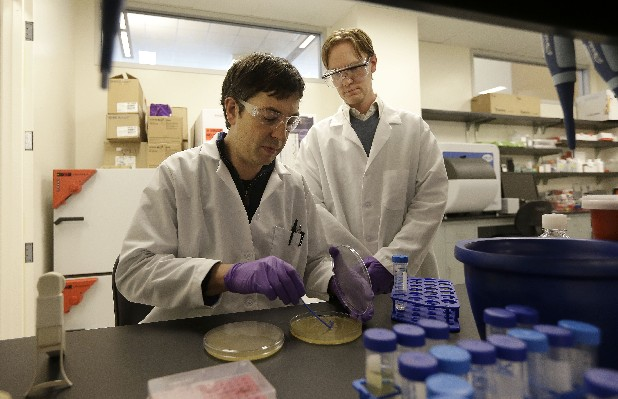 Matt Drever, left, scrapes bacteria from an agar plate during an antibody phage experiment as Charlie Holst watches at the Pfizer laboratory at the the University of California at San Francisco (UCSF) Mission Bay campus. Pfizer Inc., Astra Zeneca PLC and Eli Lilly and Co. are among the major international drug companies signing seven-figure, multiyear umbrella agreements with schools such as New York University, Harvard and the University of California-San Francisco. The deals cover a range of research projects and offer campus scientists access to once-proprietary experimental drug compounds owned by the corporate labs.