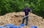 Chattanooga no longer selling wood mulch at Hawthorne Street recycle center