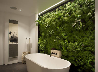How To Perfect Indoor Plant Displays For Your Home