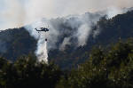 Tennessee forester injured in brush fire fight on Signal Mountain