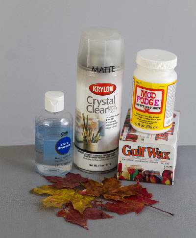 4 Ways To Preserve The Color Of Fall Leaves Chattanooga Times Free Press