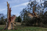 Community begins to clean up pieces from damaging Tuesday night storm [photos]