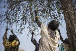 Three African countries are on the brink of famine