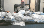 Whitfield County Sheriff's office finds $125,000 worth of marijuana
