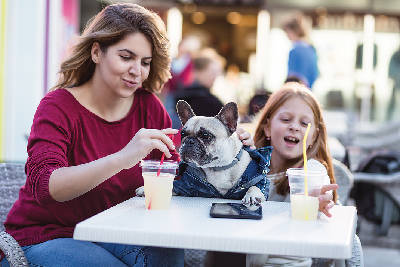 Dining For The Dogs Pet Friendly Patio Options In