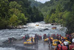 TripAdvisor recommends Ocoee River as top whitewater rafting destination