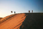 Jockey's Ridge State Park [photos]