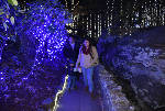 Six places to see Christmas lights in East Tennessee
