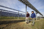 Finding a place in the sun: Rossville solar farm prepares to start up