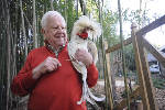 Lookout Mountain, Ga., weighs allowing backyard chickens