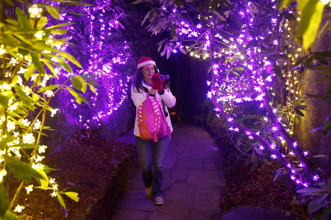 Garden Walk Chattanooga: Holiday Trail Of Lights: Chattanooga Attractions Sparkle