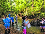 Mountain Creek cleanup efforts rewarded with grant
