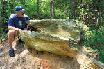 Everything you need to know about the Mississippi Petrified Forest