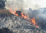 Bel-Air wildfire joins the fiery siege across Southern California