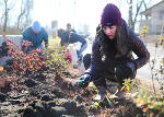 Photo gallery: Dr. Martin Luther King Jr. Day of Service