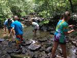 My Tennessee initiative benefits local watersheds