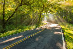 The Natchez Trace offers beautiful, relaxing vacation drive