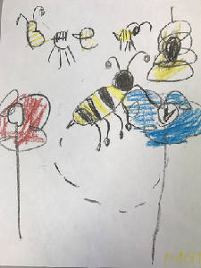 Drawn to bees: Children's art contest added to this year's Honey Harvest at Creative Discovery Museum