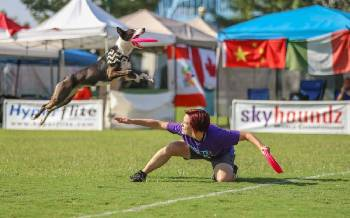 Fetch! SkyHoundz World Championship at Coolidge Park this weekend