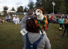 Photo gallery: Fourth annual Barktober Fest and Meowlloween Costume Contest
