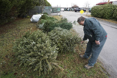 Is Adams County Picking Up Christmas Trees 2020 Here's where to recycle your Christmas tree in Chattanooga