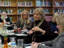 Are Hamilton County's state reps encouraged by the school district's progress under Bryan Johnson?