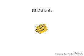 The Last Shred