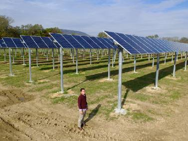 Planning for the future: TVA seeks more forms of renewable