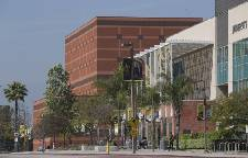 Quarantines at two Los Angeles universities amid US measles outbreak