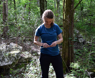 UT doctoral student finishing TVA's research on tree rings
