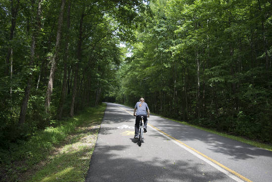 Enterprise South Nature Park to add sought-after cycling trail thanks to anonymous donation