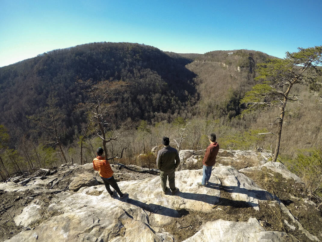 More than 6000 acres added to Cumberland Trail State Park - Chattanooga Times Free Press
